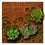 Thumbnail: Urnengrabmal und Grababdeckung Moon, Cortenstahl