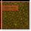 Thumbnail: Urnengrabmal und Grababdeckung Stern, Cortenstahl