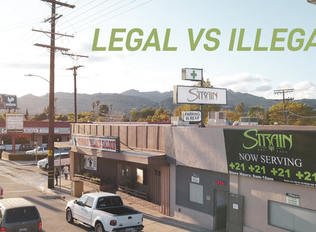 How Can I Tell If a Dispensary Is Operating Legally?
