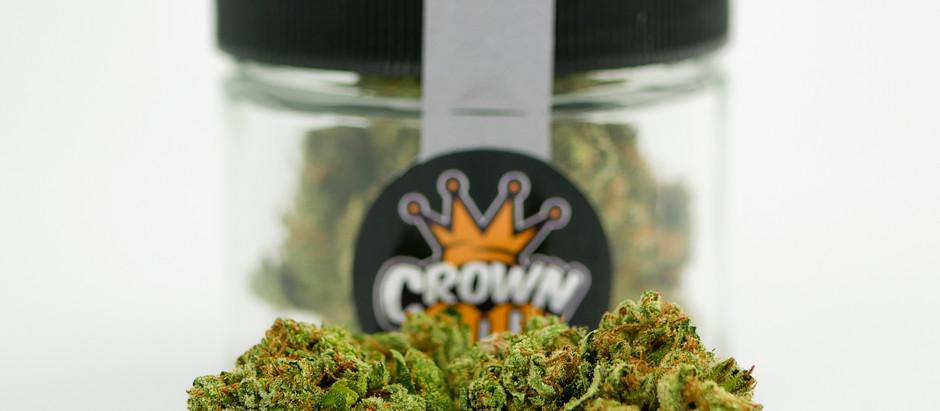 Cannabis 101: Different Ways to Consume Marijuana