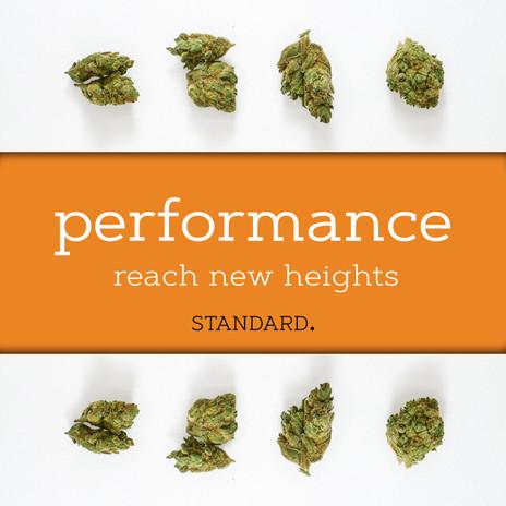 standardPERFORMANCE.jpg