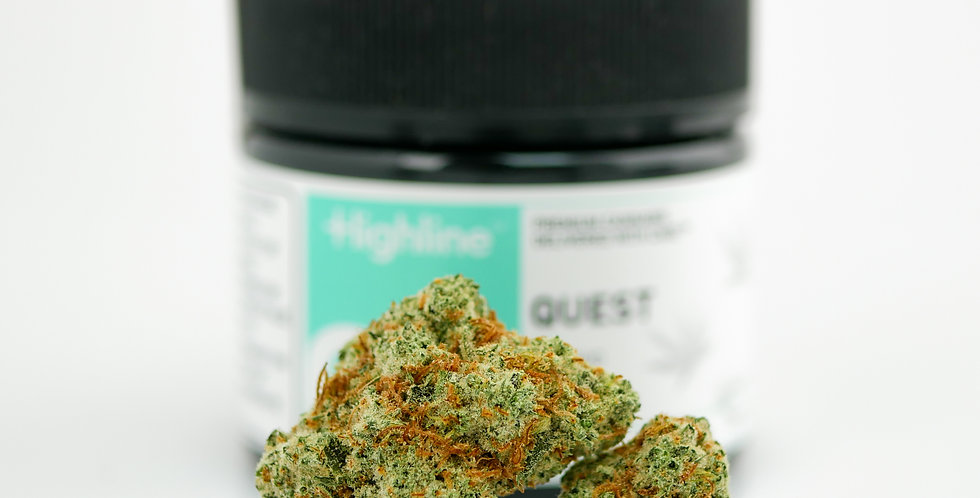 Highline - Quest, Packaged 8th