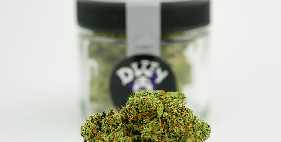 Dizzy OG, Packaged 8th
