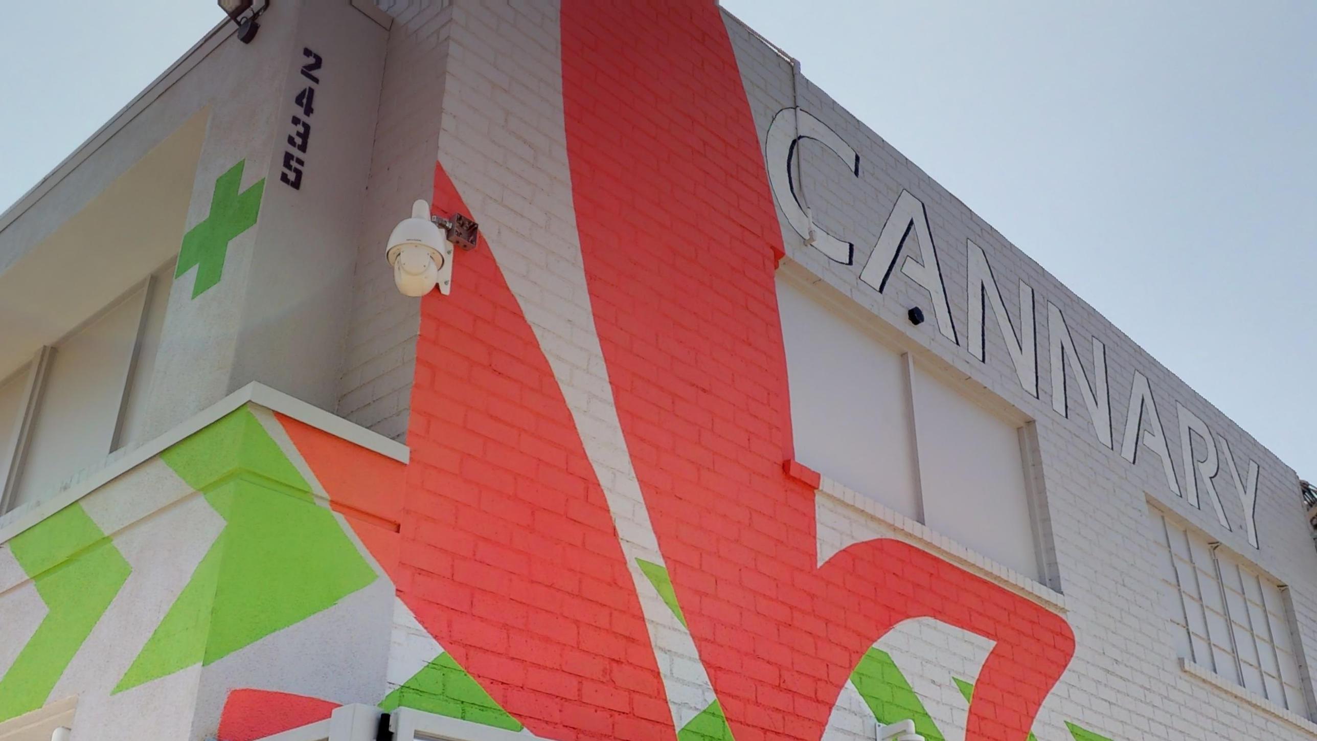 Cannary Exterior Mural