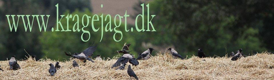 2_Kragejagtdk_Forside_1