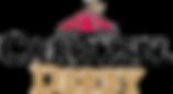 Carousel Derby Logo