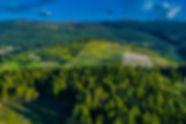 Kirschner Mtn Twlt-20.jpg