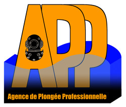 Logo entreprise travaux sous-marins