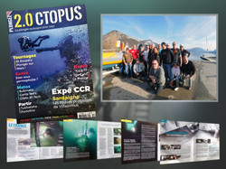 2.Octopus #107