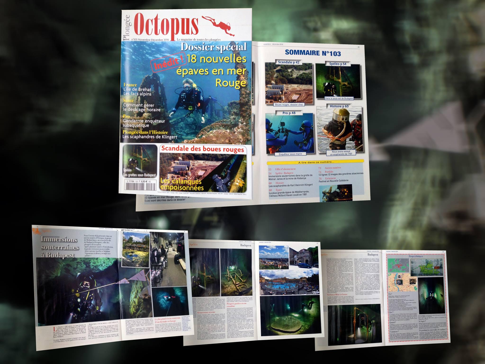 Octopus #103