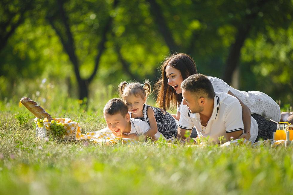 משפחה קלאסית פיקניק.jpg