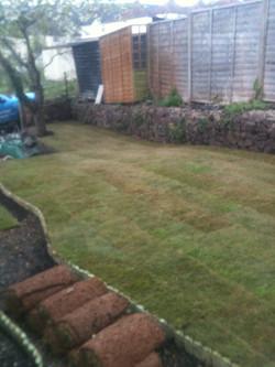 freshly laid turf