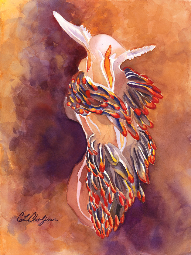 watercolor painting of a nudibranch, sea slug, opalescent nudibranch, orange and purple