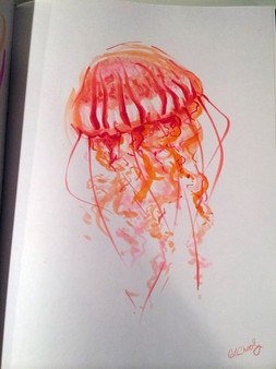 sketchbook page, marker, copic, jellyfish, south american sea nettle, orange