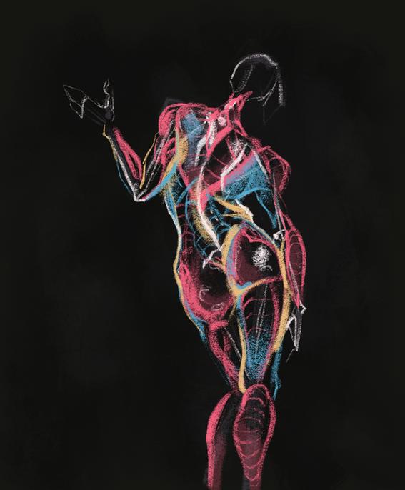 anatomy drawing, figure drawing, life drawing, live model, will weston style anatomy study
