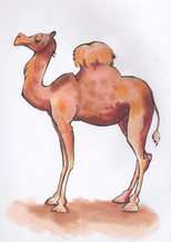 sketchbook page, cartoon camel, copic markers