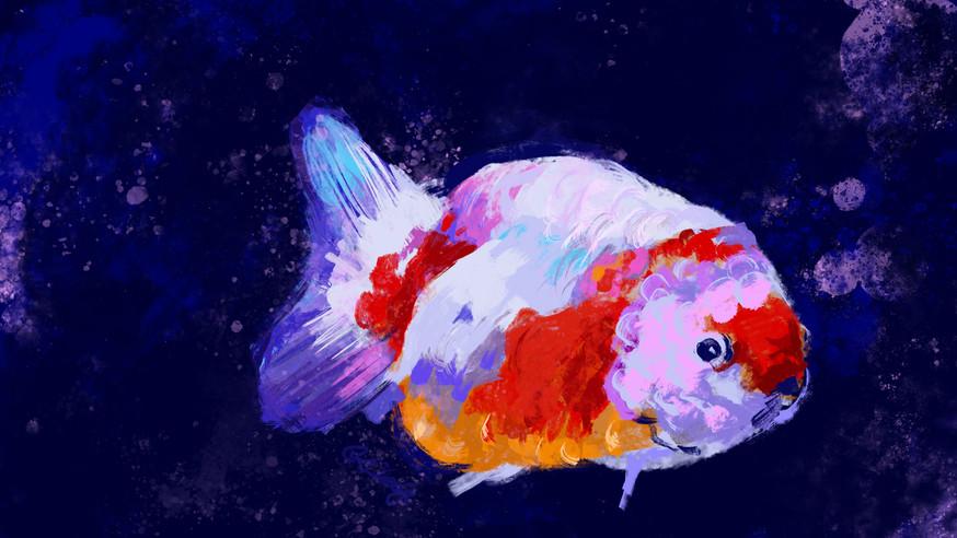 digital painting of a goldfish, photoshop