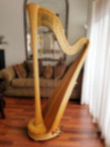 harp 100.jpg