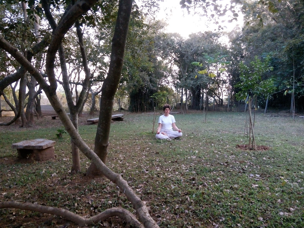Tanya is seen practicing antar mouna and meditation in Shrimath's mini forest