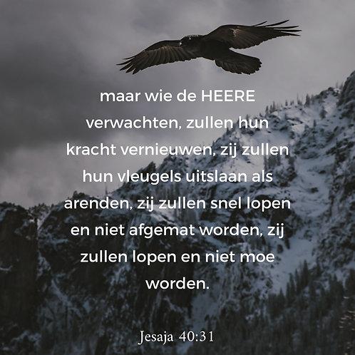 Kaart Jesaja 40:31