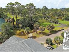 aerial view4.jpg