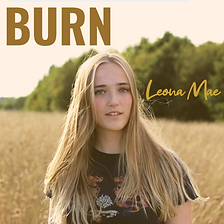 Copy of Burn.png