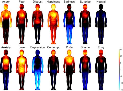 (Bodily topography of basic (Upper) and nonbasic (Lower) emotions associated with words. The body maps show regions whose activation increased (warm colors) or decreased (cool colors) when feeling each emotion. (P < 0.05 FDR corrected; t > 1.94). The colorbar indicates the t-statistic range.)