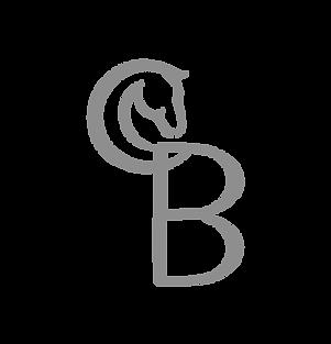 cerice logo2.png