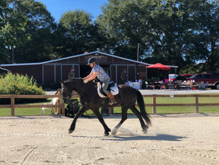 "Creating ""Flow State"" in Horse and Rider at Cedar Crest Farm in Hiram, Ga."