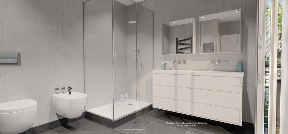 2ème version : gris et blanc