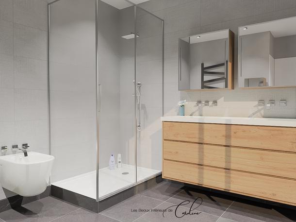 Mai 2019 - Salle de bain en 2 versions (cliquez pour découvrir le projet complet)