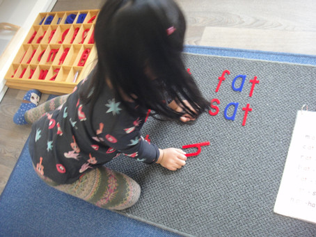 Montessori Approaches to Literacy Learning