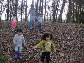 Marlborough Park _ By Aranui Montessori Presschool - 17 Chartwell Avenue