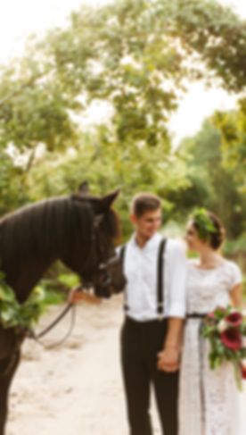 Bride and groom in forest with horses. Wedding couple with horses.jpg