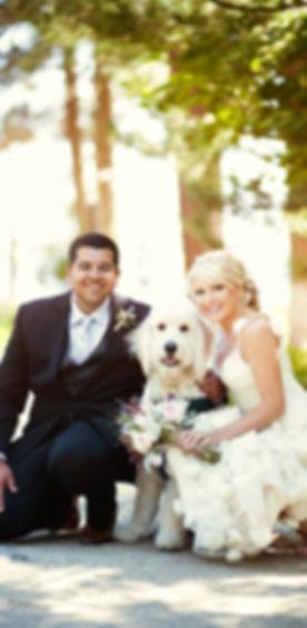 dog wedding.jpg