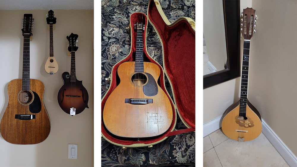 Various guitars and stringed instruments