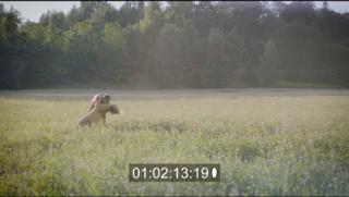 Music video Dir. Anders Reime