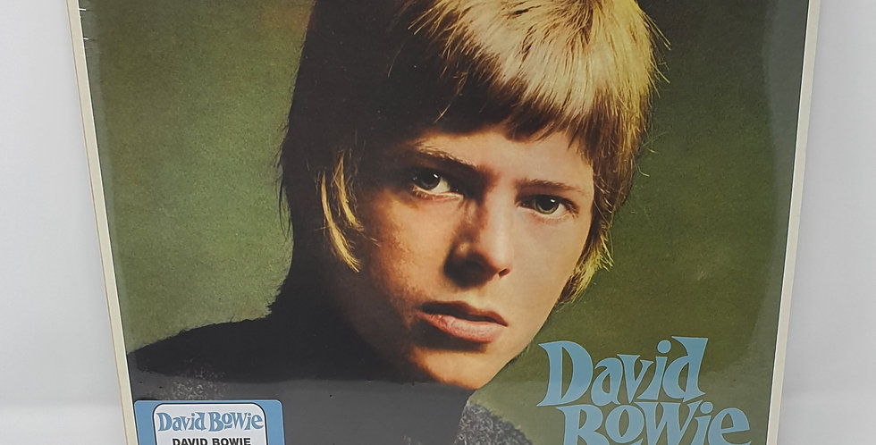 David Bowie Vinyl Album