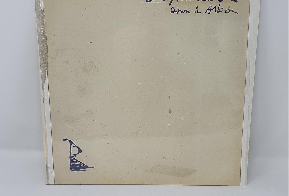 Babyshambles Down In Albion Vinyl Album