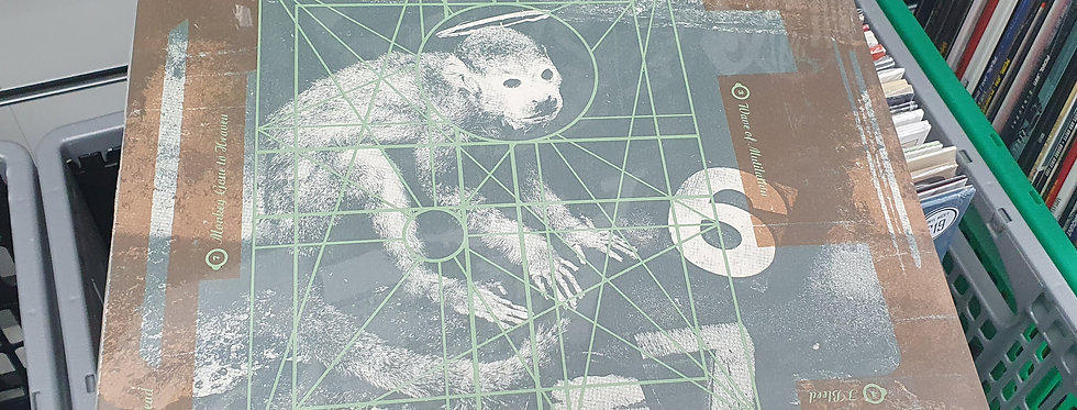 Pixies  Doolittle Vinyl Album