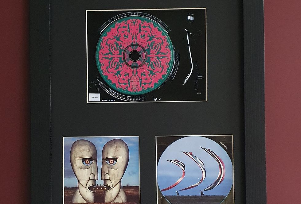 Pink Floyd Division Bell cd album display