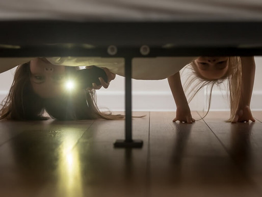 There's a Monster Under My Bed: An Emotional vs. Skills Approach Part 2