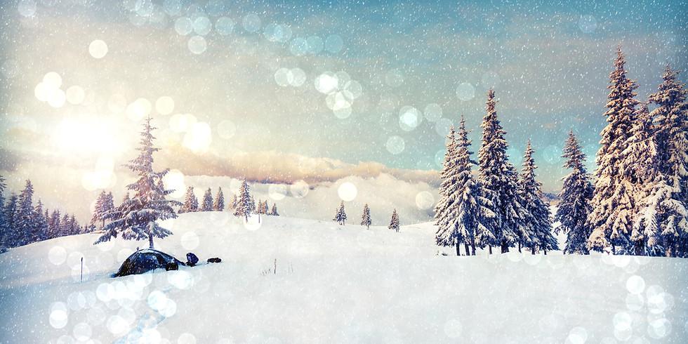 Winter Wonderland Painting Experience