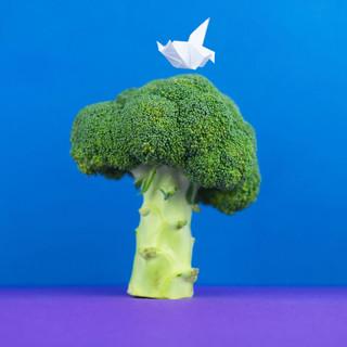 Broccoli.mp4
