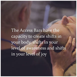 the access bars have the capacity to....