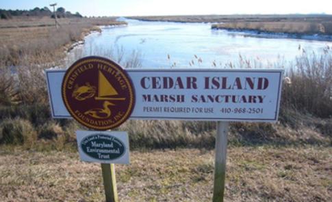 Cedar Island marsh.png