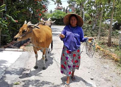 Balinesische Frau