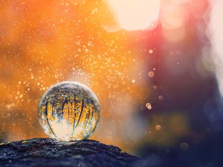 「秋分の日~信頼する自分で出会える世界~」*星のことば・花のことば