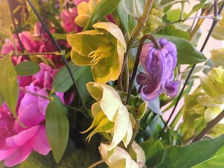 フラワーアストロロジーで花贈り②