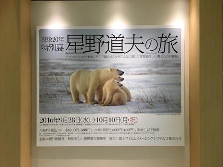 星野道夫さんの写真展